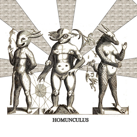 homunculus thesis quest Its a side-quest so you wouldnt come to it following the ivan soulsinger questions talk to sunbrand again and you'll have to defeat the giant homunculus.